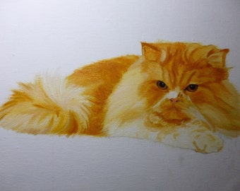 Orange Cat Pet Memorial Original Oil Painting 8 x 10 on Wrapped Canvas Provide Picture by Pigatopia