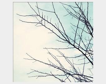 Bare Branches Photo, Pale Blue Nature Art, Pale Blue Decor, Winter Photo, Tree Photo, Aqua Sky Photo, Aqua and Black Art, Bare Tree Branches