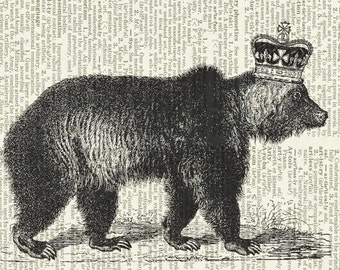 princely bear dictionary page print