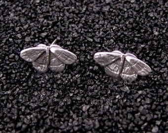 Tiny Moth Earrings