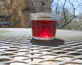 Homemade Organic Native Arizona Prickly Pear Cactus Fruit Jelly - 4 oz Jar