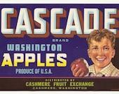5 Old Vintage FRUIT CRATE LABELS