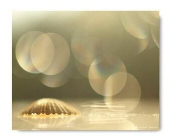 Clam Shell Photograph Clam Shell Print...Ocean Sea Water Beach White Natural Art Affordable Art Tribal Beach Decor Nature Lover
