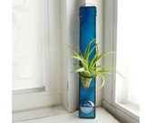 Stained Glass Air Plant Holder - Teal Blue