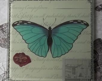 Teal Green Butterfly, Glass Tile Artwork, Office Paperweight, Reverse Decoupage Similar To John Derian
