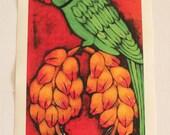 Indian Parakeet MAXI PRINT