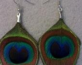 Peacock feather earrings, peacock, cruelty free, boho, boho chic, gossip girl, peacock earrings, ready to ship