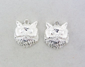Pair of Silver-tone Owl Head Charms