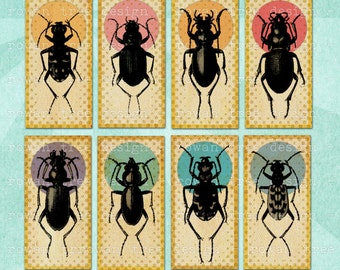 BEETLE COLLECTION Digital Collage Sheet 1x2in Domino Tile - no. 0187
