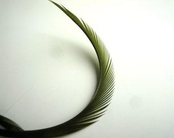 GOOSE BIOT Feathers,  Dark Moss Green /  746 / BOGO