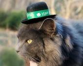 Kiss Me I'm Irish - Saint Patrick's Day Cat Hat