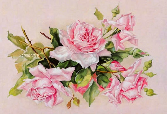 Print FREE SHIP Soft Pink Pastel Cabbage Roses Catherine Klein Half Yard Long CP170