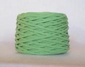 Sweet Pea Green Tarn Recycled T-Shirt Yarn 71 Yds