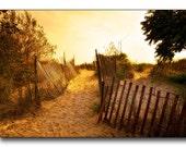 Sandy Shore Fine Art Photography Soft Gold Color Sandy Path Over The Sand Dune Evening Sunset