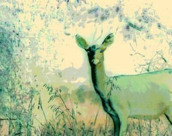 Deer Art, Spring Green, Doe In Woodlands, Native American Totem Animal, Wildlife Home Decor, Impressionism Wall Hanging,Giclee Print, 8 x 10