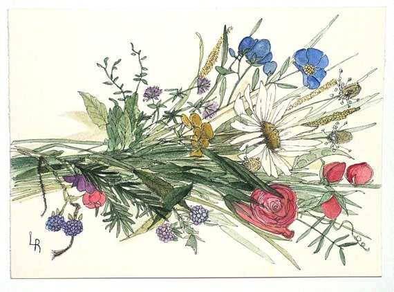 Watercolor Painting Illustration Botanical Garden Flowers Wildflower Bouquet  Artwork by Laurie Rohner