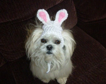 EASTER BUNNY Dog hat - Humorous - 2 to 20 lb pets - choose color - need measurement