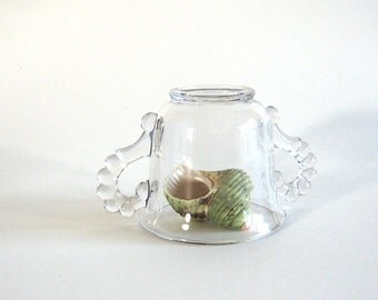 Glass Dome Cloche Repurposed Vintage Sugar Bowl Candlewick Imperial