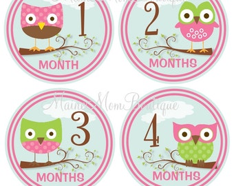FREE GIFT, Baby Girl Owl Monthly Stickers, Baby Girl Month Stickers, Milestone Stickers, Pink, Green, Owl Nursery, Baby Shower Gift
