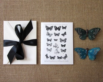 Butterfly Note Cards Set of 10 with Matching Envelopes