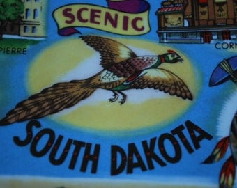 while on vacation - souvenir plate South Dakota - State Plate - MidCentury - Kitsch