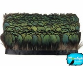 Feather Trim, 1 Yard - Green Bronze Lady Amherst Tippet Feather Fringe : 3110