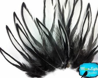 Unique Feathers, 1 Dozen - NATURAL WHITE Laced Hen Cape Feather  : 2189