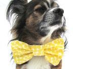 Clip on Dog Bowtie-Collar bowtie- Yellow Lemons