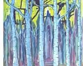 Bright Birches -  Art Print