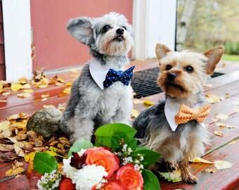 Custom Wedding Dog Collar- shirt and bow tie collar-wedding pet accessory