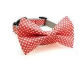 Dog Bow Tie Collar - Tangerine Polka Dots