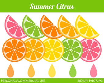 Summer Citrus Clipart - Digital Clip Art Graphics for Personal or Commercial Use