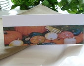 Place Cards/ Name Cards/ Food Tents - Fall Gourds -Set of 6