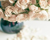 Pastel Flower Photography, Beige, Blue, Roses, Girl Nursery Decor, Shabby Chic, Neutral Wall Art