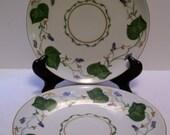 Plates , Limoges France, Sweet Pea Vine,