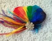 RAINBOW Feather Fascinator,Rainbow Hair Clip, Bridal Fascinator, Wedding Fascinator, Rainbow Wedding Head Piece, Rainbow Feather Fascinator