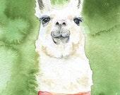 Llama Watercolor Painting Fine Art Print 8 x 10 / 8.5 x 11