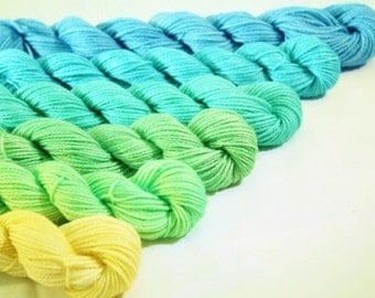 Mini Skein Gradient Dyed -June Madness