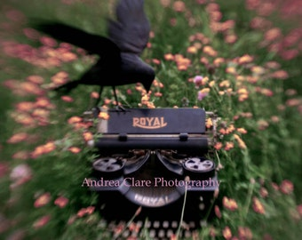 Raven Photograph, Typewriter,Fine Art Photography Print, Poet, writer, print, photo, picture, bird, crow, author, poetry, Poe, nature, field