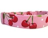 Pink Dog Collar - Cherry Smoothie
