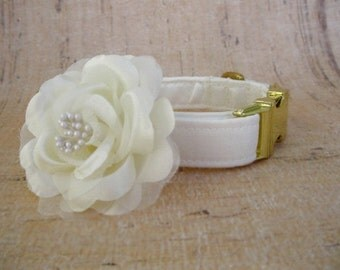Ivory Satin Dog Collar with Brass Hardware and Small Flower Accessory