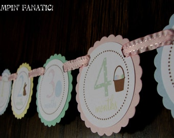 READY to SHIP Elegant Easter Collection: Just Born/0-12 mos Picture Hanging Banner. Pastels. First Birthday Photo Banner.