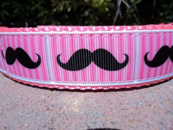 """Sale Dog Collar Pink Striped Mustache 1"""" wide side release buckle adjustable / see other stache listing within"""