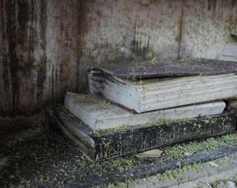 Books - Fallen Church photography