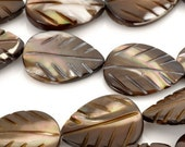 MOTHER OF PEARL-Dark Brown Carved Leaf Bead-15.5 Inch Strand