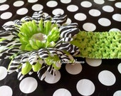 Green Polka Dot and Zebra Print Gerbera Daisy Hair Clip with Headband