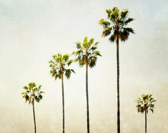 "California Palm Tree Photograph Beach House Wall Art Tropical Decor Beige Green Decor Palm Tree Wall Art Nature Photography Print ""Five"""