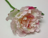 Silk Flowers - One Peony in Shades of Pink and Cream White - ON STEM - 6 Inches - Artificial Flowers