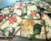 Flower Stickers: 50 Vintage Botanical flower stickers, Vintage postcard stickers, vintage envelope seals, vintage flower stickers