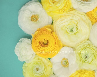 """Ranunculus Photography - Flower Nature Photograph  - Mother's Day - Baby Nursery - Floral Home Decor - Fine Art 8x8, 8x10 -  """"ALTOGETHER"""""""